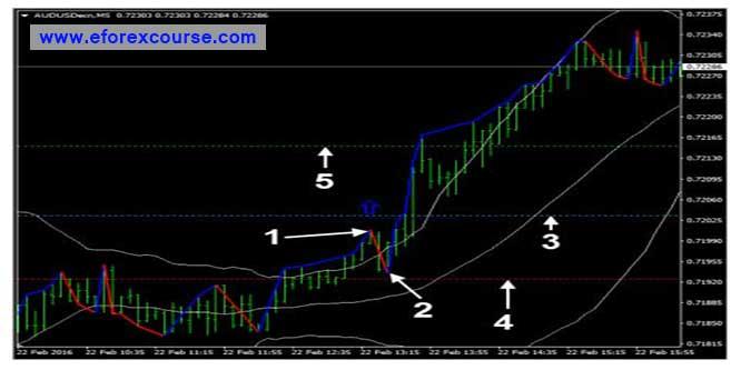 Sb forex trading